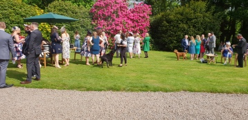 Drinks reception in Kiekbean, with canine guests too.