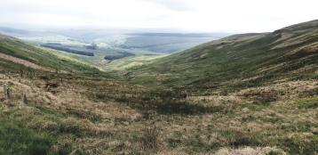 View down the valley near Moffat.